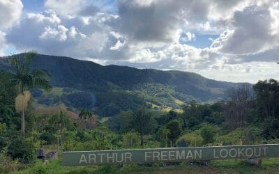 Freeman's Organic Farm, Currumbin Valley