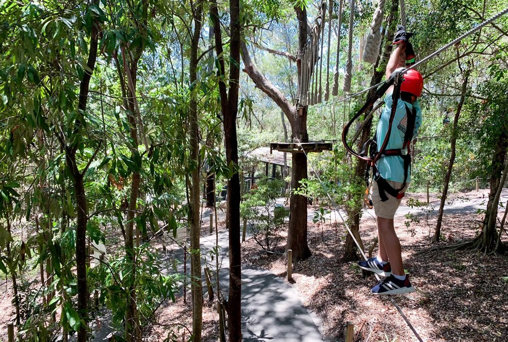 Treetop Challenge at Currumbin Wildlife Sanctuary